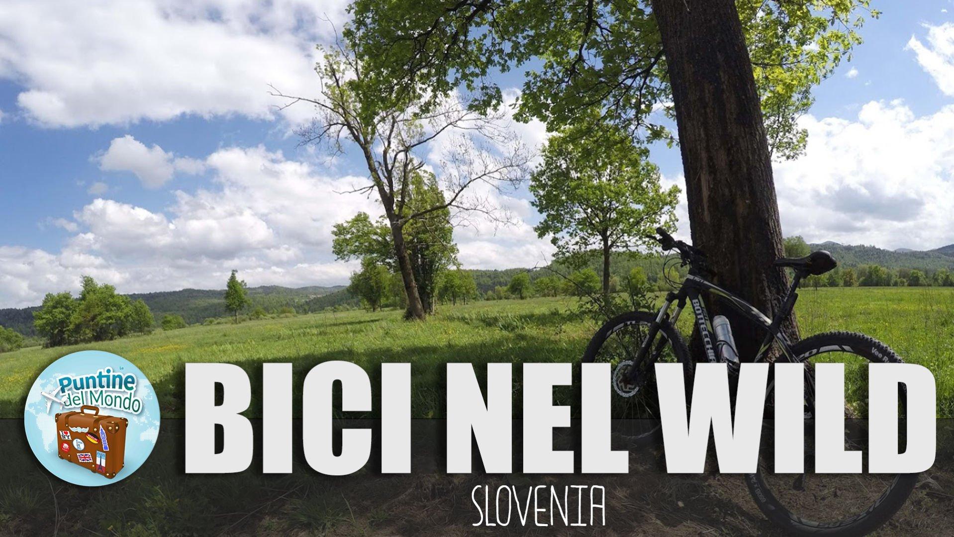 Bici e Picnic a Planina in Slovenia