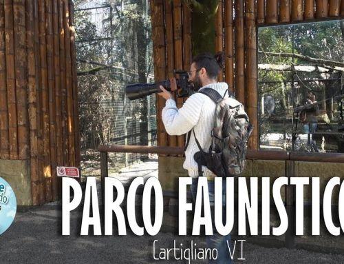 Parco Faunistico Cappeller – Cartigliano VI